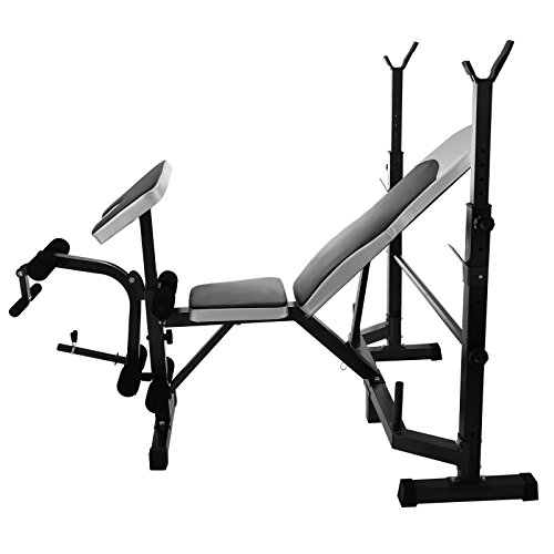 achat chaneau banc de musculation pliable sports banc. Black Bedroom Furniture Sets. Home Design Ideas