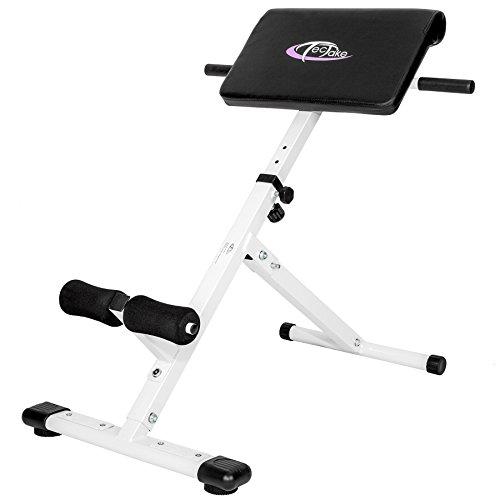 Achat tectake appareil de musculation du dos abdominaux fitness banc pliable hyper extension - Banc abdominaux exercices ...